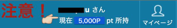 PONEY紹介ポイント