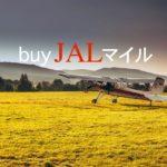 【JALマイル購入方法】ヤフオクより安い!100%還元で思考するマイレージの価値と価格