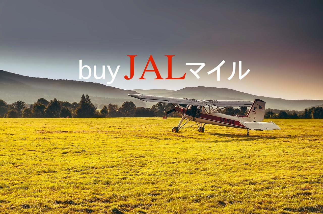 JALマイル購入方法の解説