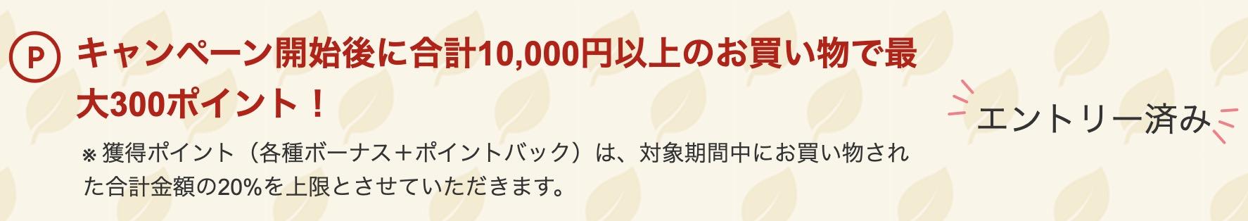 楽天リーベイツ1万円利用で最大300ポイント
